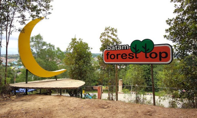 Pulau Forest Top