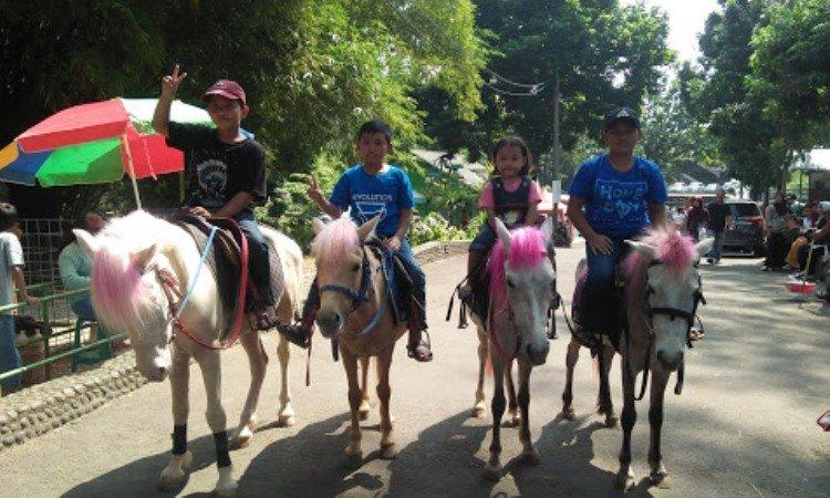 Aktivitas di SKI Bogor